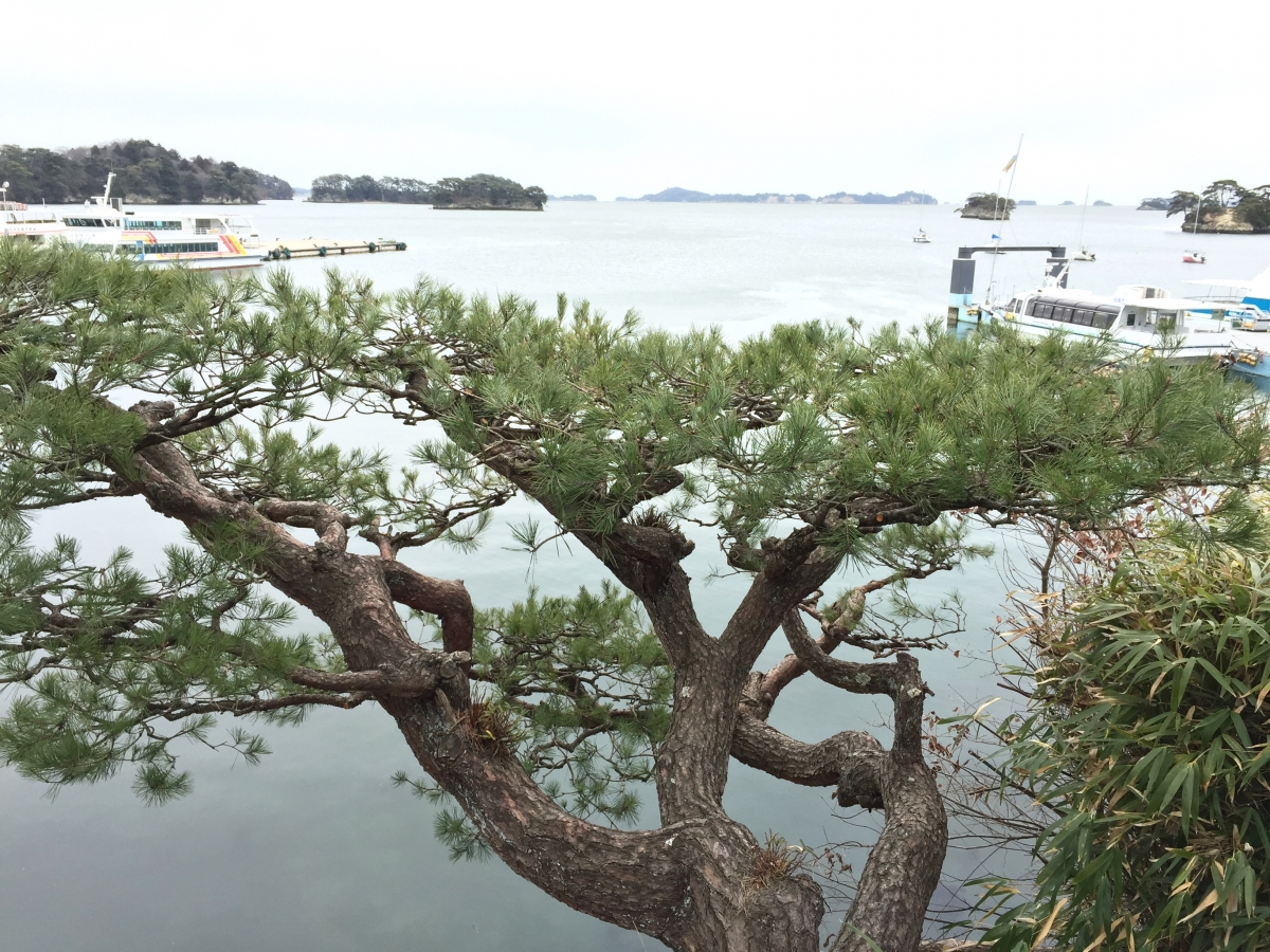 View of Matsushima from Kanrantei