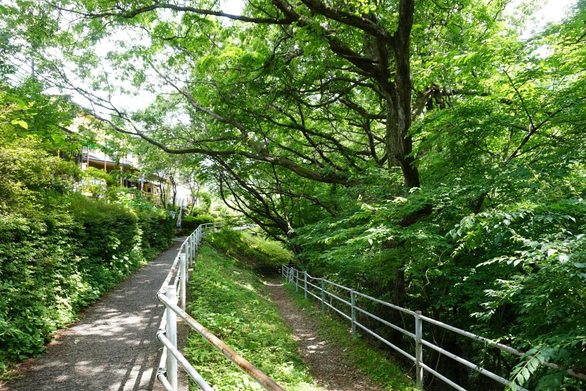 Ryuokyo trail