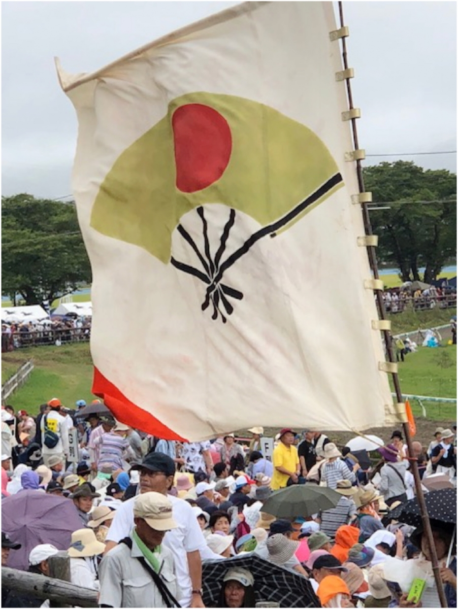 flag with fan