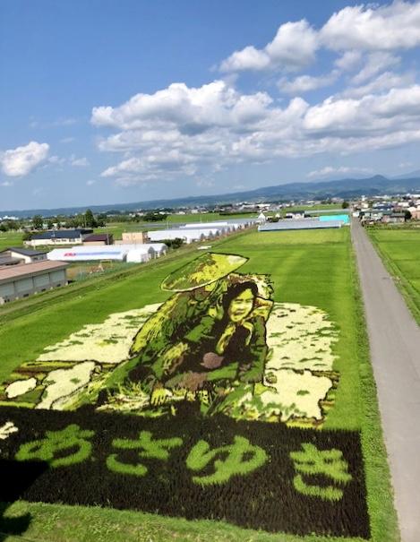 Aomori tanbo art