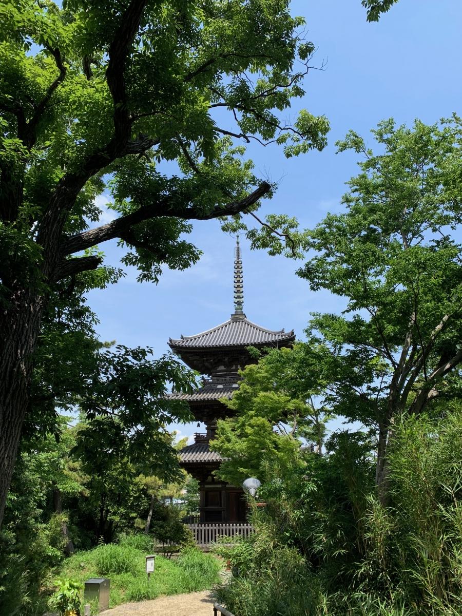 sankeien pagoda